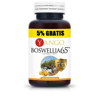 Boswellia 65™ - 5% gratis - 120 kapsułek