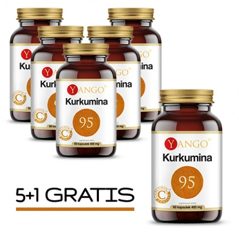 6x Kurkumina 95™